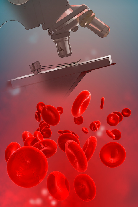 Microscope with magnified blood cells